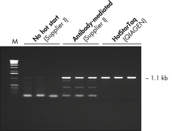 Effect of hot start on RT-PCR performance.